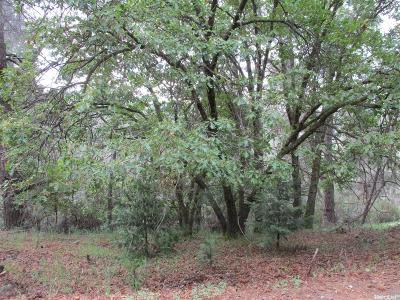 Pollock Pines Residential Lots & Land For Sale: 5315 Five Spot Road