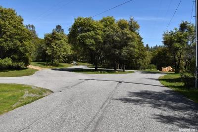 Auburn Residential Lots & Land For Sale: 3300 Nancy Drive