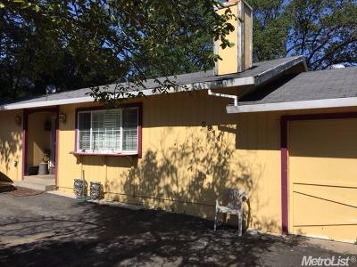 Placerville Single Family Home For Sale: 2911 Grandview Street