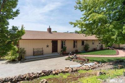 Placerville Single Family Home For Sale: 3394 Coon Hollow Road