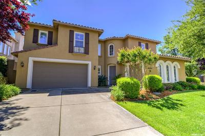 El Dorado Hills Single Family Home For Sale: 4074 Borders Drive