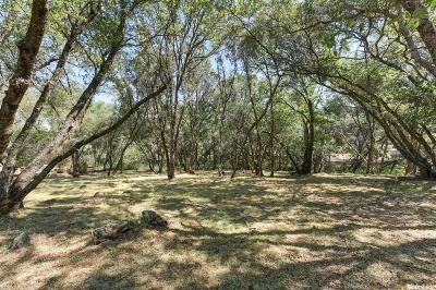 El Dorado Hills Residential Lots & Land For Sale: 6181 Aldea Drive