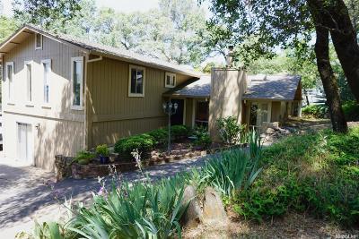 Auburn Single Family Home For Sale: 11213 Welty Lane