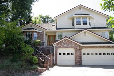 Fair Oaks Single Family Home For Sale: 4423 Bijan Court