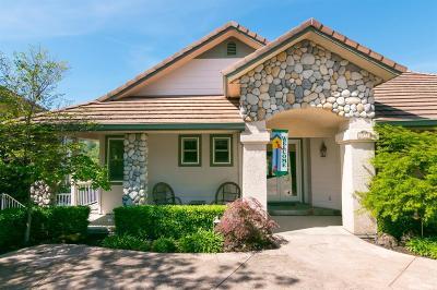 Copperopolis Single Family Home For Sale: 1077 Shoreline Drive