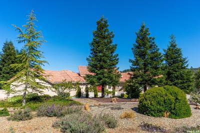 Single Family Home For Sale: 4210 Chemise Lane