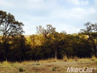 El Dorado Hills Residential Lots & Land For Sale: 4943 Breese Circle