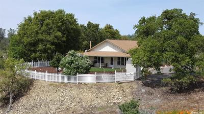 Copperopolis Single Family Home For Sale: 4603 Conestoga