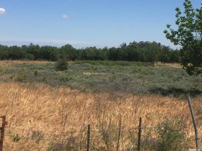 Ceres Residential Lots & Land For Sale: 3221 East Redwood Road
