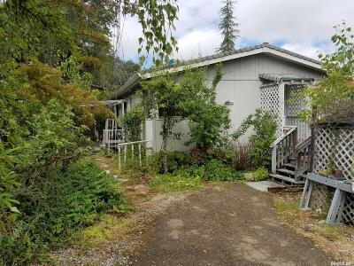 Placerville Single Family Home For Sale: 3142 Life Way