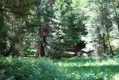 Foresthill Residential Lots & Land For Sale: Elliot Ranch Rd
