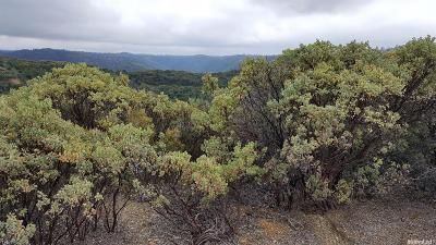 Placerville Residential Lots & Land For Sale: Texas Canyon Road
