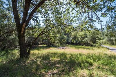 Placerville Residential Lots & Land For Sale: 5541 Rocky Ridge Road