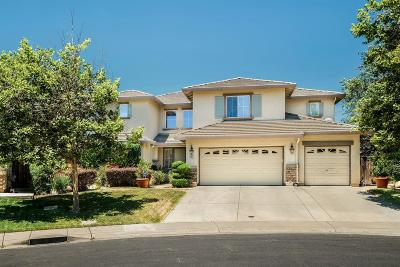 Elk Grove Single Family Home Active Rel. Clause: 9461 Triathlon Lane