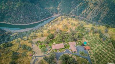 Sonora Single Family Home For Sale: 25855 Powell Ranch Road