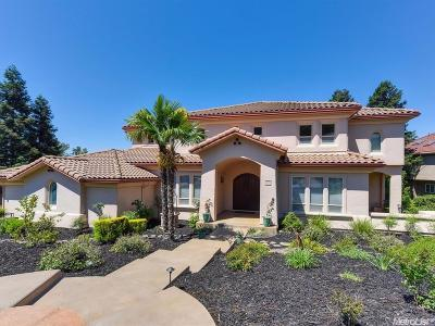 El Dorado Hills Single Family Home For Sale: 478 Powers Drive
