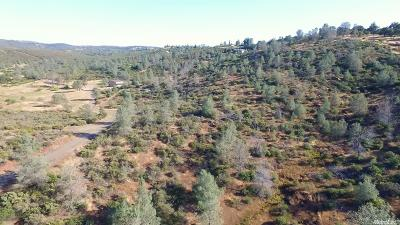 El Dorado Hills Residential Lots & Land For Sale: Salmon Valley Lane