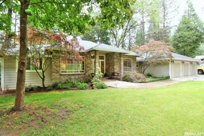 Nevada City Single Family Home For Sale: 14630 Greenwood Circle