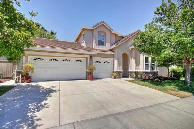Sacramento Single Family Home For Sale: 4827 Verena Lane