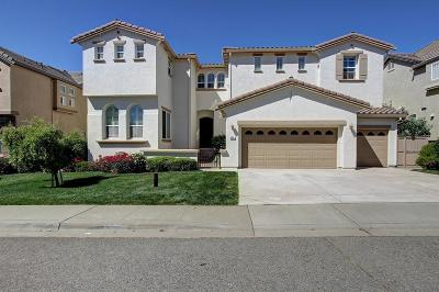 Auburn Single Family Home For Sale: 593 Sawka Drive