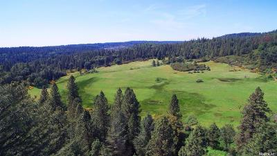 Garden Valley Residential Lots & Land For Sale: 4500 Cook Ranch Road