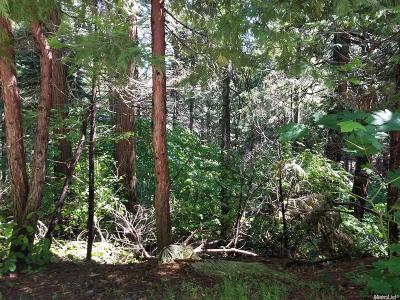 Pollock Pines Residential Lots & Land For Sale: 6833 Onyx