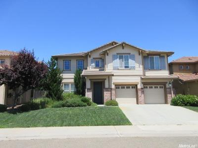 Rancho Cordova Single Family Home For Sale: 4026 Pinoche Peak Way
