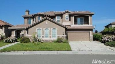 Lincoln Single Family Home For Sale: 1301 Earlton