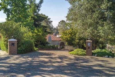 El Dorado Hills Single Family Home For Sale: 461 Appaloosa Court