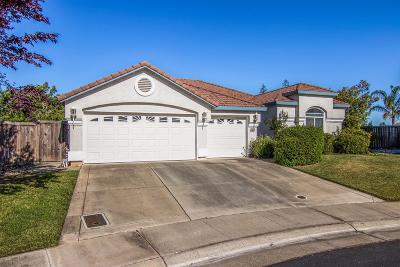 Elk Grove Single Family Home For Sale: 2533 Marina Point Lane