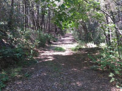 Somerset Residential Lots & Land For Sale: Choctaw Lane