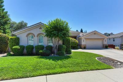 Auburn Single Family Home For Sale: 1166 Humbug Way