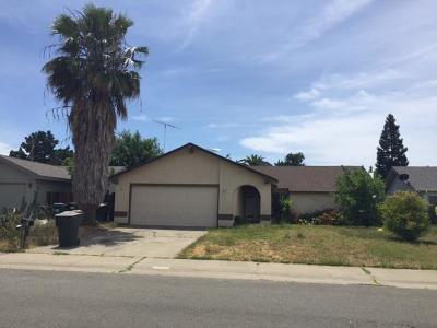 Sacramento Single Family Home For Sale: 9612 Helio Drive