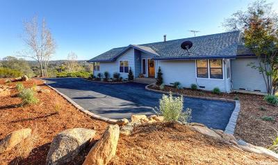 Placerville Single Family Home For Sale: 5142 Little Brush Ridge Road