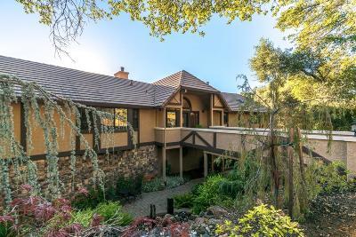 Auburn Single Family Home For Sale: 11160 Shadow Court