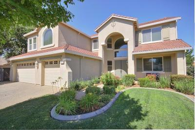 Elk Grove Single Family Home For Sale: 9732 Blansfield Way
