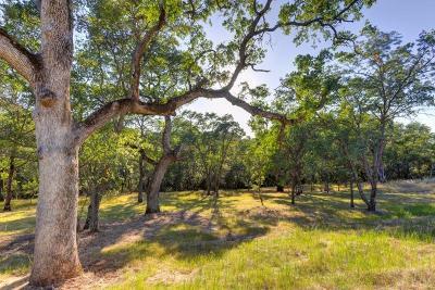 El Dorado Hills Residential Lots & Land For Sale: 714 Da Vinci Court