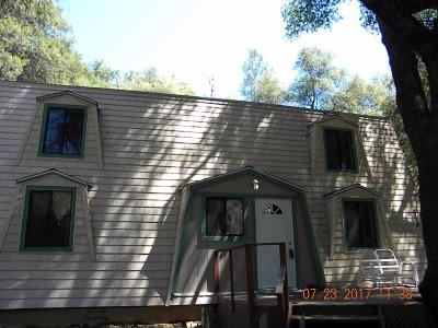 Placerville Single Family Home For Sale: 3851 Starburst Lane