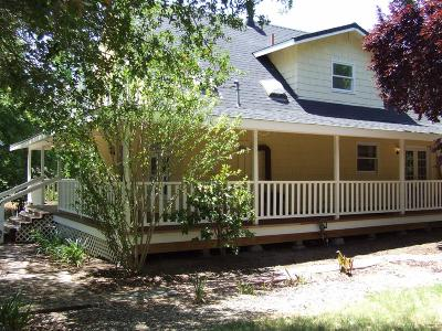 Loomis Single Family Home For Sale: 3262 Old Orchard Lane