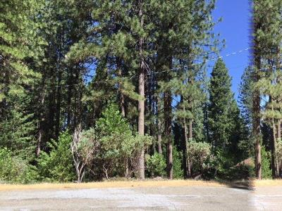 Grizzly Flats Residential Lots & Land For Sale: 5477 Pine Ridge Dr