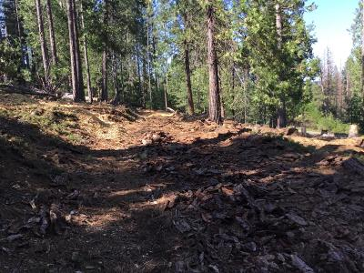 Grizzly Flats Residential Lots & Land For Sale: Mt. Pleasant Drive