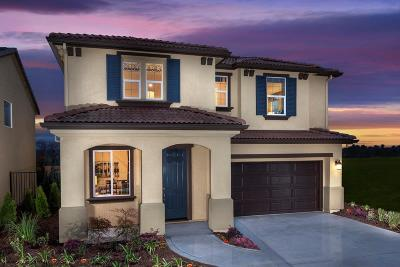 Rocklin Single Family Home For Sale: 4317 Gentry Way