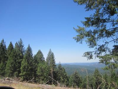 Grizzly Flats Residential Lots & Land For Sale: 2089 Forest Brook Lane