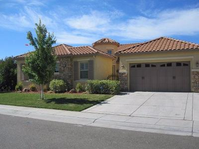 Elk Grove Single Family Home For Sale: 9822 Collie Way