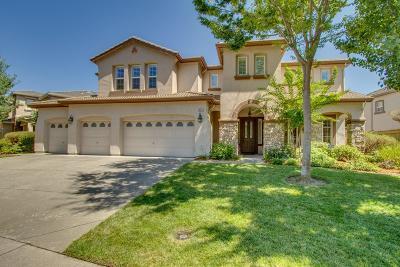 Folsom Single Family Home For Sale: 1669 Bowen Drive