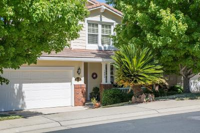 Rocklin Single Family Home For Sale: 3006 Fox Hill Drive