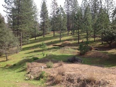 Placerville Residential Lots & Land For Sale: 3411 Parleys Canyon Road