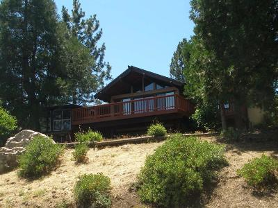 Pollock Pines Single Family Home For Sale: 4034 Pearl Road