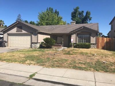 Lathrop Single Family Home For Sale: 879 Long Barn Drive