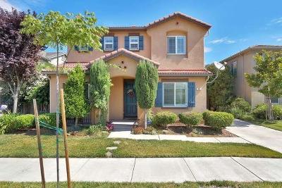 Lathrop Single Family Home For Sale: 383 Scrub Oak Drive